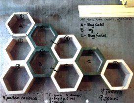 Hexagons laid out showing which will have planting or insect hotel in